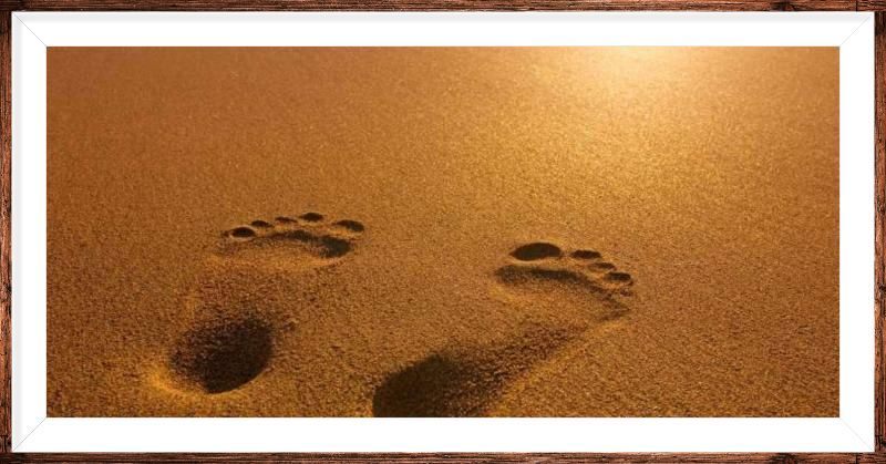 """Cathedral Congregations Retreat """"Walking with Jesus"""""""